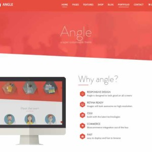 Angle-Flat-Responsive-Bootstrap-MultiPurpose-Theme