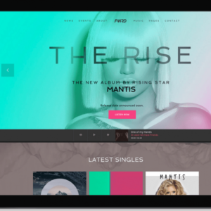 FWRD-WP-theme-for-Musician-and-Bands-600x597