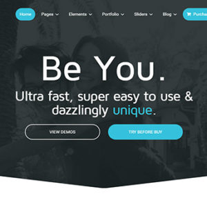 you-theme-review-homepage