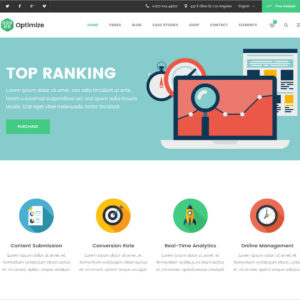 seo-digital-marketing-social-media-wordpress-website-theme-591